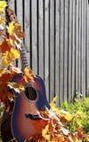 在篱芭的吉他 库存照片