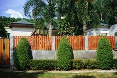 在篱芭的装饰叶子 免版税库存照片
