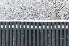 在篱芭的雪 库存照片