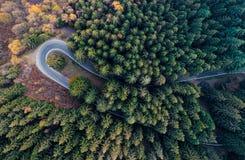 在簪子轮路弯的顶上的空中顶视图在乡下秋天橙色杉木的forestFall,绿色,黄色,红色树 免版税图库摄影
