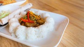 在米的猪肉咖喱 免版税库存照片