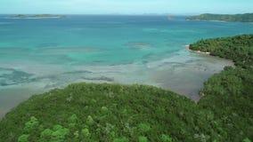 在米领域和椰子的飞行在蓝色海背景  米大阳台鸟瞰图在海附近的 影视素材