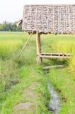 在米领域或稻田附近的小屋 图库摄影