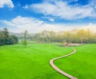 在米领域的竹桥梁与村庄 免版税图库摄影