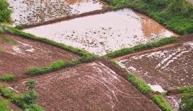 在米领域的翻土机 免版税库存图片
