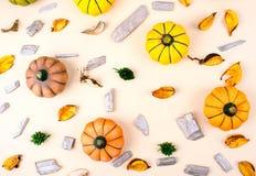 在米黄背景的装饰南瓜 免版税库存照片