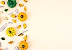 在米黄背景的装饰南瓜 库存图片
