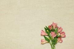 在米黄花岗岩背景的桃红色花德国锥脚形酒杯 库存照片