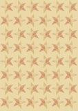 在米黄背景的星 免版税库存照片