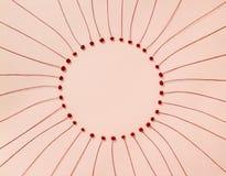 在粉红彩笔背景的精美红色花 免版税图库摄影