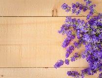 在粗砺木水平的甜淡紫色花 免版税库存图片