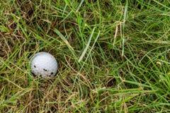 在粗砺的高尔夫球 免版税库存图片