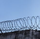 在粗砺的高石墙顶部的铁丝网螺旋在天空背景 库存照片