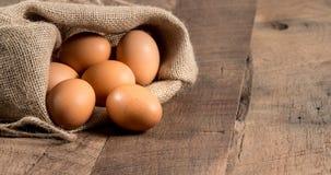 在粗麻布大袋的新近地下的有机鸡蛋在木头 免版税图库摄影