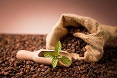 在粗麻布大袋的咖啡beens 库存图片