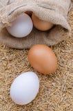 在粗麻布大袋的未加工的鸡蛋在米剥背景壳 免版税库存图片