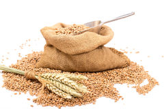 在粗麻布大袋的麦子 免版税库存图片