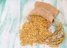 在粗麻布大袋的水稻种子 免版税库存照片