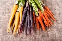 在粗麻布的红萝卜 免版税库存图片