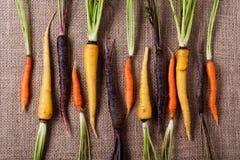 在粗麻布的红萝卜 库存照片