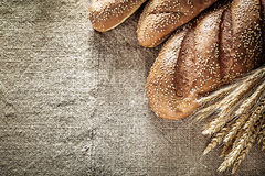 在粗麻布背景的有壳的面包黑麦耳朵 免版税图库摄影