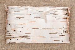 在粗麻布背景的白桦树皮 免版税图库摄影