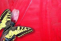在精密油漆绘画地点墙壁木黄色附近的背景蓝色概念梯子 掠过艺术家和红色在帆布的brushs冲程 在红色抽象背景的美丽的蝴蝶 免版税库存照片