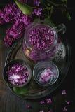 在糖的淡紫色花 免版税库存图片