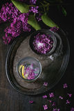 在糖的淡紫色花 库存照片