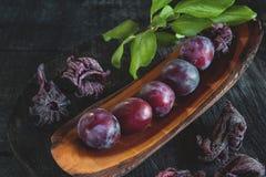 在糖的美丽的成熟蓝色李子与干木槿在一个木板开花 复制空间 库存照片