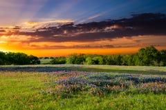 在糖里奇路,恩尼斯, TX的日落 库存图片