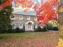 在系列房子前院的秋天叶子 图库摄影