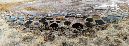 在索尔顿湖的五颜六色的被暴露的罗非鱼鱼巢 免版税库存照片