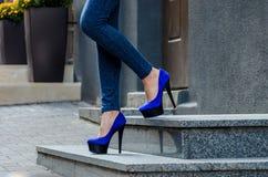 在紧的牛仔裤和蓝色天鹅绒hig的美好的苗条女性腿 库存照片