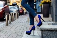 在紧的牛仔裤和蓝色天鹅绒hig的美好的苗条女性腿 免版税库存照片