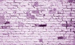在紫罗兰色口气的老被风化的砖墙样式 免版税库存图片