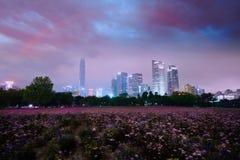 在紫罗兰色尘土,深圳,中国的城市场面 库存照片