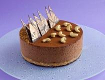 在紫色背景的巧克力沫丝淋蛋糕 库存图片