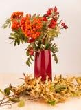 在紫色花瓶的秋天装饰用花楸浆果 库存照片