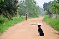 在红土的路的泰国人乘坐的自行车去农田 库存照片