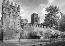 在红外线的城堡 免版税图库摄影