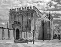 在红外线的城堡 库存图片