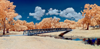 在红外线的桥梁 免版税图库摄影