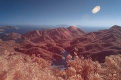 在红外颜色的超现实的场面 免版税库存照片