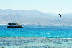 在红海埃拉特的珊瑚礁 图库摄影