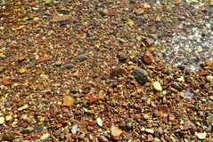 在红海的岸的石头 免版税库存图片
