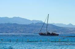在红海的海豚礁石 免版税库存图片
