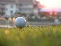 在红色发球区域的高尔夫球在绿色草坪 免版税库存照片