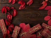 在红色和伯根地树荫的秋天单色静物画 免版税图库摄影