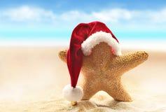 在红色圣诞老人帽子的海星走在海海滩的 图库摄影
